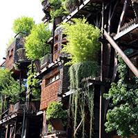 Design d'espace – Un immeuble forêt